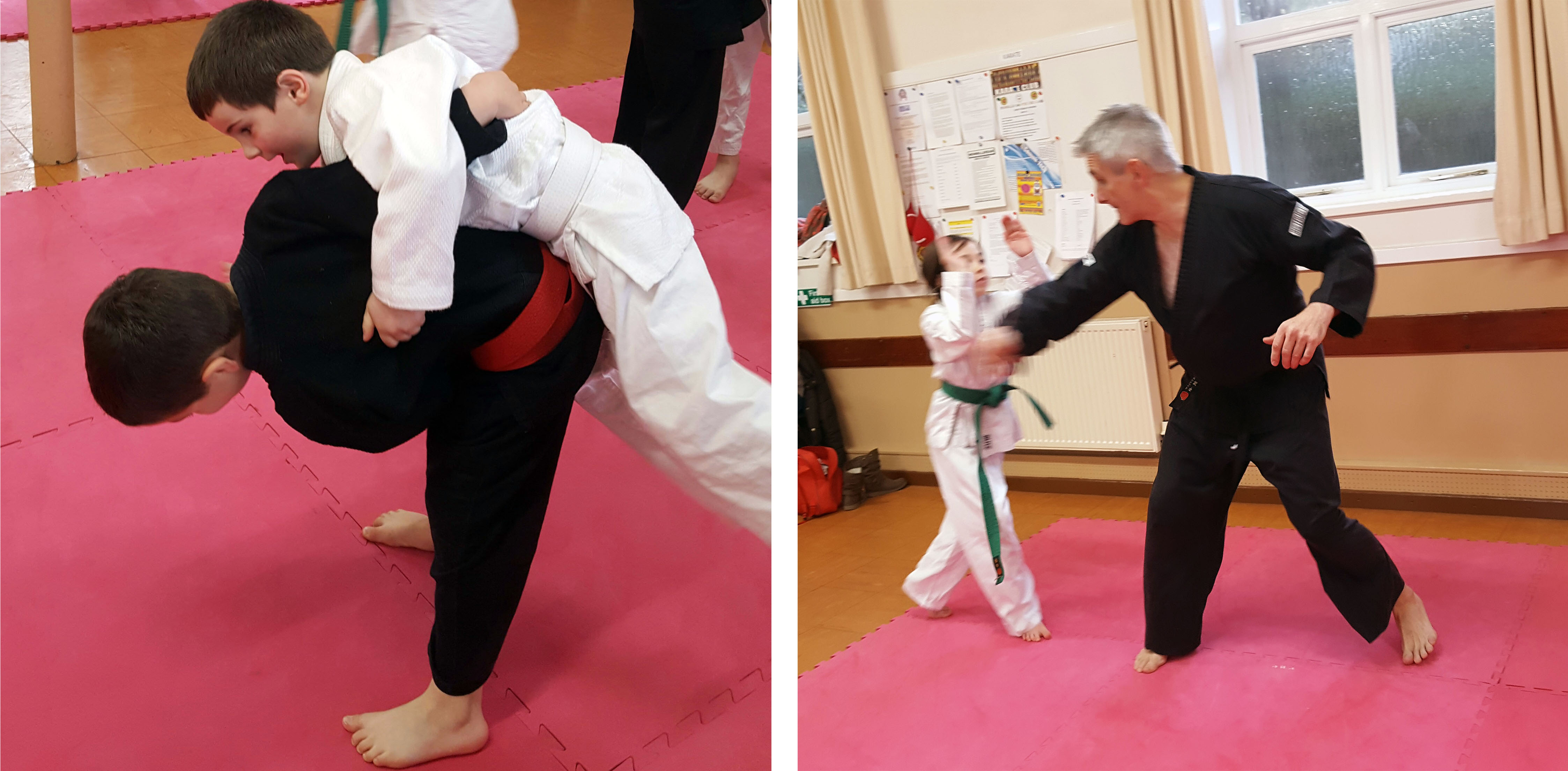 Ju Jitsu Training